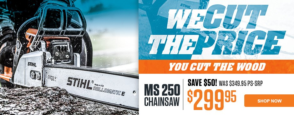 SAVE NOW on the MS 250 Chain saw!